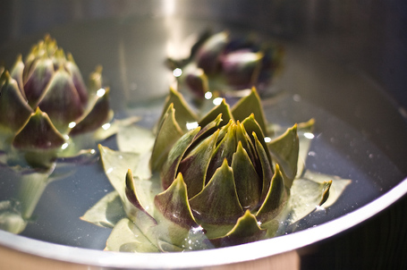 Homegrown Artichokes