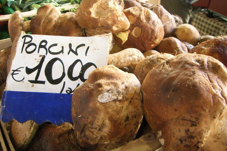 Porcini at the market in Florence, Italy