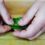 How to Cut Mint Chiffonade (Tiny Ribbons) – Video
