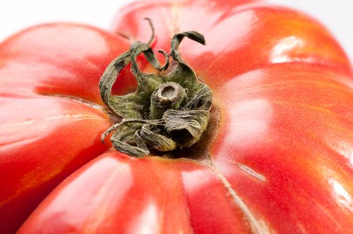 Vintage Wine Heirloom Tomato Closeup