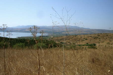 View of the Sea of Galilee (Kinneret) from the Golan Heights