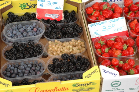 Blueberries, blackberries, white currants, and strawberries