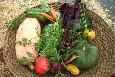 Produce at South 47 Farm in Redmond, WA