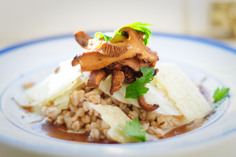 Farro salad with chanterelle mushrooms, fennel, apples and parmesan, and an apple vinaigrette