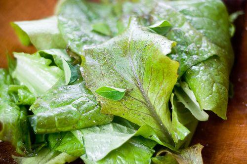 Lemon-Mustard Vinaigrette – The Simplest and Best Salad Dressing – Recipe